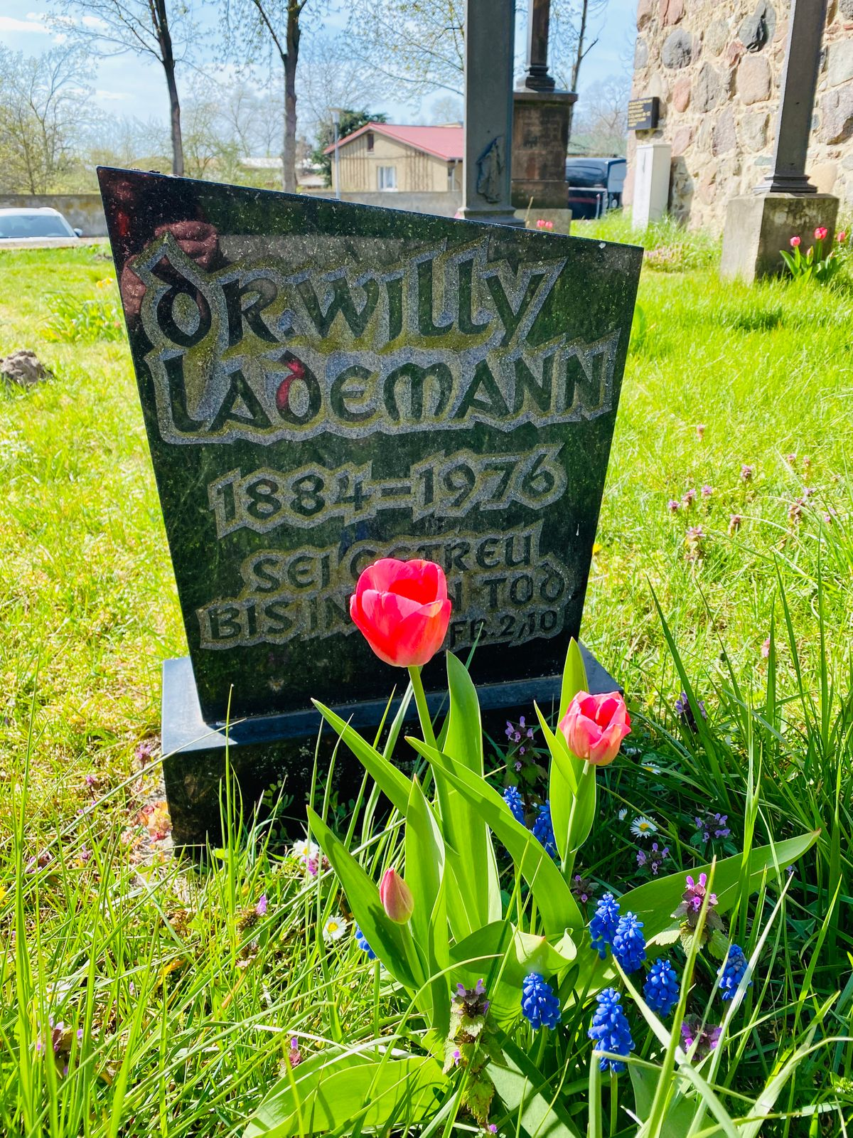 Grab Dr. Willy Lademann 1884-1976 in Jühnsdorf
